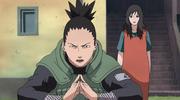 Shikamaru protege a Kurenai embarazada en el ataque de Pain
