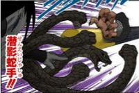 Mãos de Serpente Oculta na Sombra (Mangá)