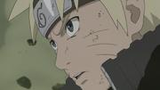 Naruto decide lutar (Anime)