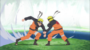 Naruto contra o Naruto Negro