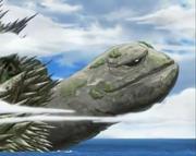 Cara de Genbu
