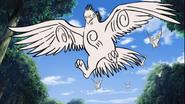 Desenho de Imitação da Super Besta Falcão
