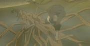 Kiho vs Yamato