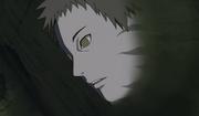 Zetsu observando la batalla de los hermanos Uchiha