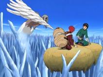 Kimimaro vs Gaara Rock Lee