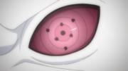Urashiki's Rinnegan