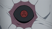 Shin's right Sharingan
