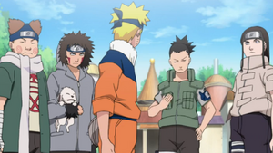 Time de Resgate ao Sasuke