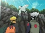 Naruto vs. Deidara