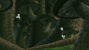 Bosque de Hongos de Kusagakure