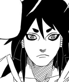Indra2