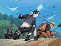 Team Yamato