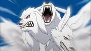 O Lobo de Três Cabeças finaliza o Time Kazami