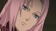 A Decisão Dolorosa de Sakura
