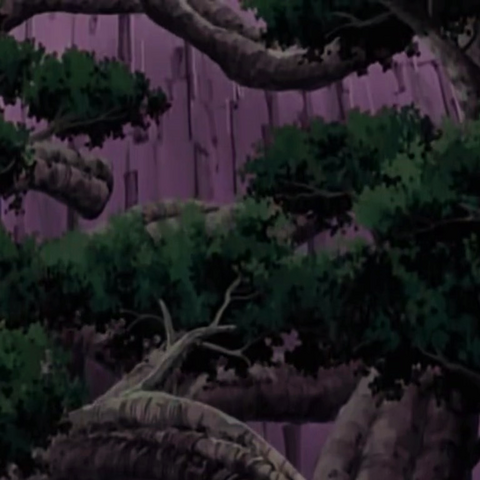 ...koja narastaju u veliku šumu.