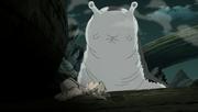 Katsuyu es Invocada por Tsunade