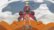 Naruto Datang kekonoha