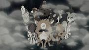 Ninken summoned to search Orochi