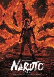 Live Spectacle Naruto Poster