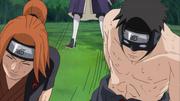 Fū e Torune são liberados