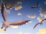 Migration Season