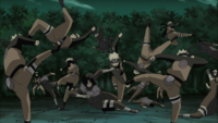 Taijutsu dos Múltiplos Clones das Sombras (Naruto - Anime)