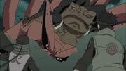 Gamabunta cai sobre a Kyūbi