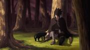 Sasuke debaixo da árvore