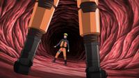 Prisão da Boca da Cobra
