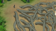 Underground Roots Technique