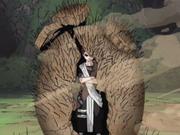 Escudo de Arena Anime