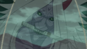 Rostro del Shinigami