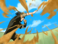 Teisho (Sasuke)