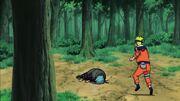 Sabiru derrotado