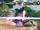 Combo da Espada