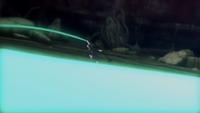 Drenagem de Chakra (Obito-Game)