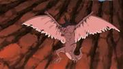 La bestia en pleno vuelo