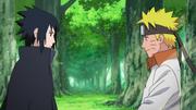 Naruto y Sasuke siguen sus caminos en buenos términos