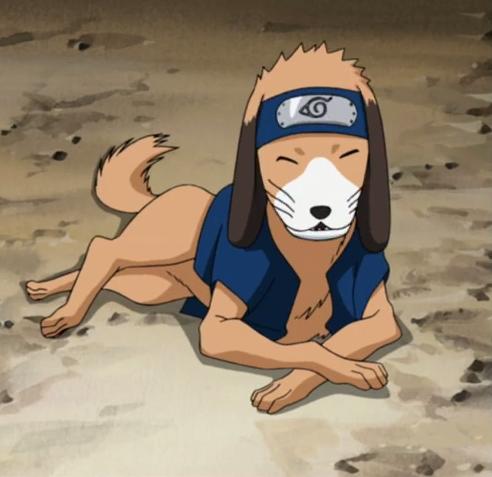 35+ Anjing ninja kakashi terbaru