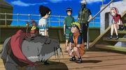 Hikaru y los demás tras la tormenta