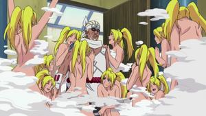 Jutsu Harem Anime