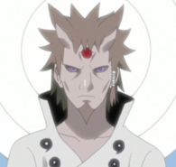 Adult Hagoromo