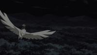 Argila Explosiva - Águia (Filme)