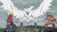 The Last Battle, Urashiki