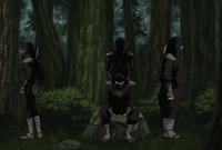 Ninjas Mercenarios