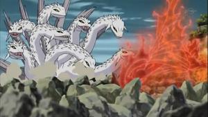 Jutsu Ocho Ramificaciones Anime