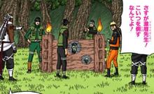 Elemento Madera Cepo de Madera Manga Color