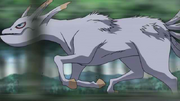 Kokuō velocidade