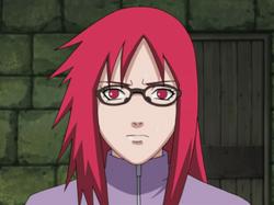 Karin profilo