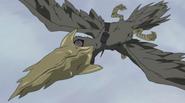 Oiseau au Bec Perforant